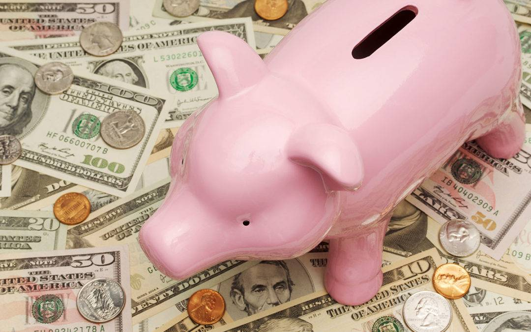 image of piggy bank for True Measure Financial Advisors blog post How to Train Your Financial Planning Clients to Think Differently About Money Part 1